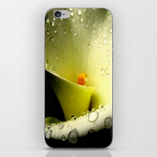 Lily of the Nile iPhone & iPod Skin