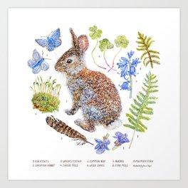 Spring Wildlife Art Print