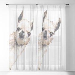 Sneaky Llama White Sheer Curtain