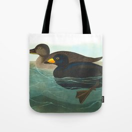 Scoter Duck Vintage Scientific Bird & Botanical Illustration Tote Bag