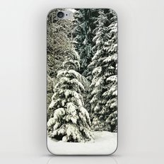 Warm Inside iPhone & iPod Skin