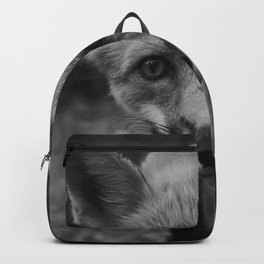The Fox (Black and White) Backpack