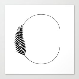 Palm C Canvas Print