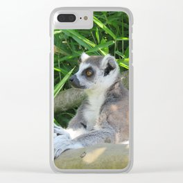 Cute and relaxed Ring-tailed lemur (lemur catta) Clear iPhone Case