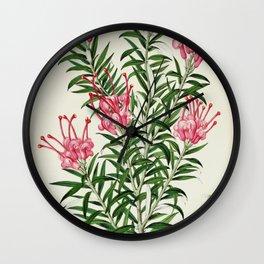 Flower grevillea rosea Wall Clock