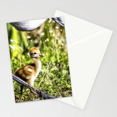Watchful Eye Stationery Cards