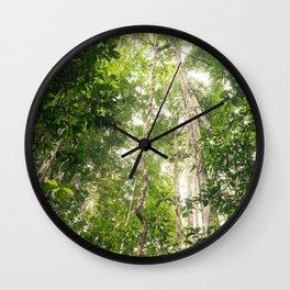 Amazon Canopy Wall Clock