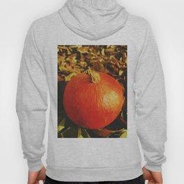 orange is new black Hoody