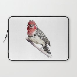 Red-and-yellow Barbet Laptop Sleeve