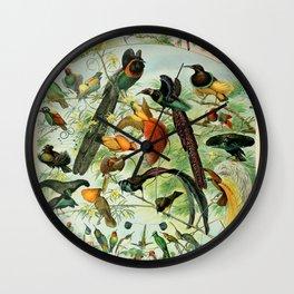 """Adolphe Millot """"Oiseaux"""" Tropical Birds Nouveau Larousse 1905 Wall Clock"""