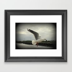 Flying Free Framed Art Print