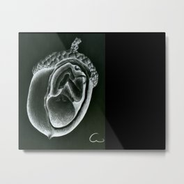 In a nut shell Metal Print