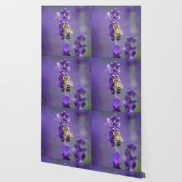 Lavender Bee Wallpaper