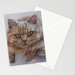 Cattitude - Long Haired Cat Staring at You Stationery Cards