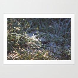 Frosty Underfoot Art Print