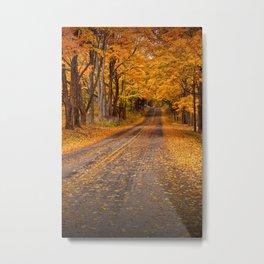 Fall Rural Country Road Metal Print