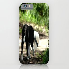 Life can be Cruel! iPhone Case