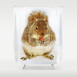 Squirrel with an Acorn Shower Curtain