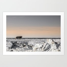 Icy Edge Art Print