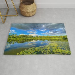 Reflections on a Pond Rug