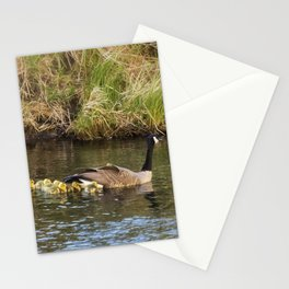 Moving the Brood Stationery Cards