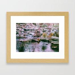 Hemp Hill Framed Art Print
