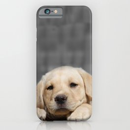A dog in Bag iPhone Case