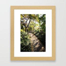 Pathway in Central Park, New York Framed Art Print