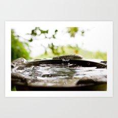 Rain Splash Art Print