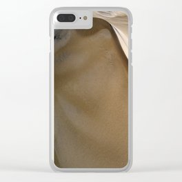 South West Sand Dunes Clear iPhone Case