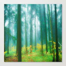 Fairy tale (Green) Canvas Print