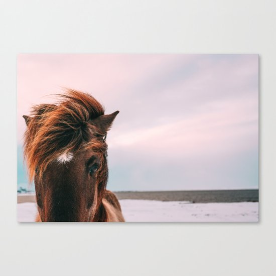One Eyed Larry Canvas Print