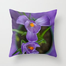 Potted Crocus hoping for spring Throw Pillow