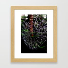 Dew Covered Web in the Catskills Framed Art Print