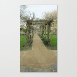 A Winding Way Canvas Print
