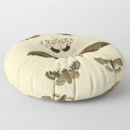 Vintage Moths Floor Pillow