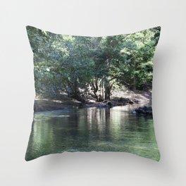 Tranquil Stream Throw Pillow