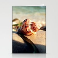 seashell Stationery Cards featuring seashell by Vivian Fortunato