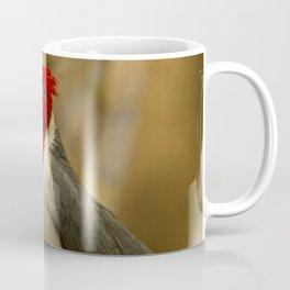 Red Crested Cardinal Coffee Mug
