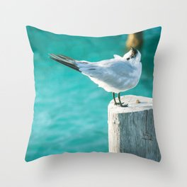 Shy Bird Sunbathing Throw Pillow