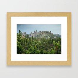 Black Hills National Forest Framed Art Print