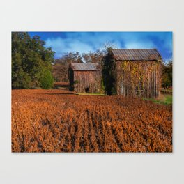 Change of Time Canvas Print
