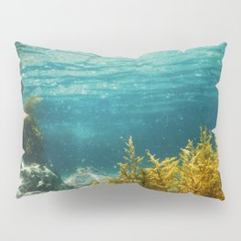 Forest of Seaweed, Seaweed Underwater, Seaweed Shallow Water near surface Pillow Sham