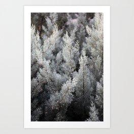fractal magic Art Print