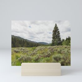 Across the Meadow - Nature Photography Mini Art Print