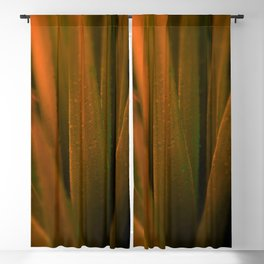 Golden LeafsGolden Leafs Blackout Curtain