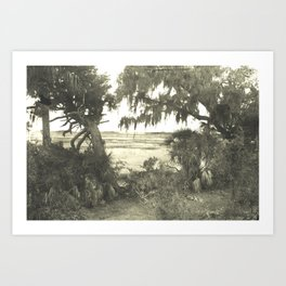 Wild Landscape Art Print