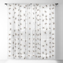 House spiders Sheer Curtain