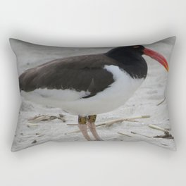 Oyster Catcher at Cape May Rectangular Pillow