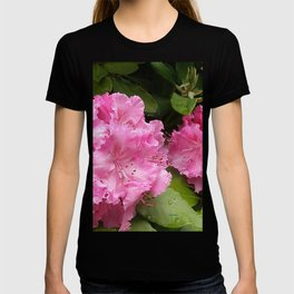 Rhododendron After Rain T-shirt